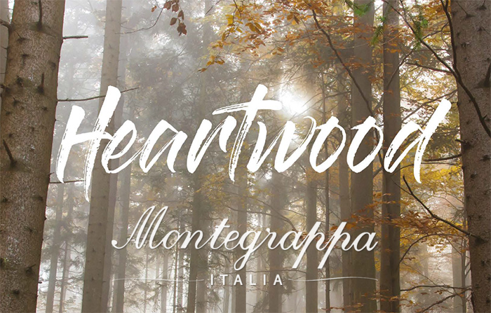 Montegrappa Heartwood pennen